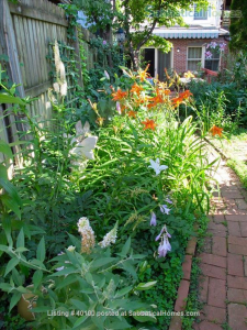 The private entrance through the garden to Dr. Iovino's Georgetown basement apartment listing on SabbaticalHomes.com