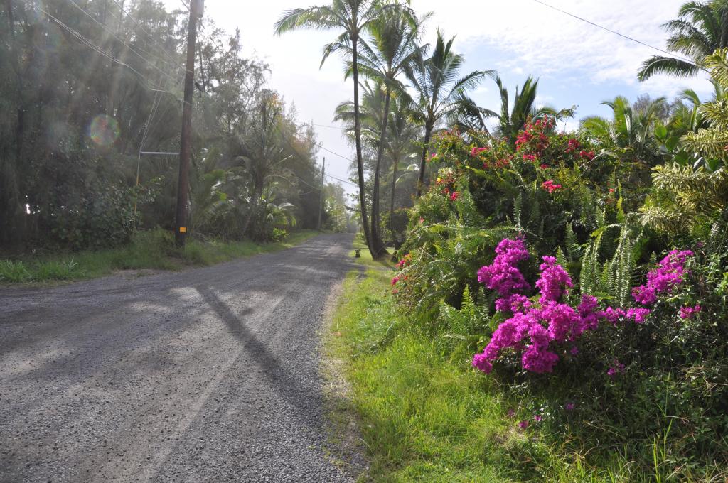 A road in the Hawaiian Paradise Park neighborhood, Kea'au, Hawaii.